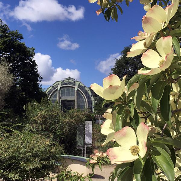 Entre science et art :  la magie du Jardin des Plantes et de son quartier 1